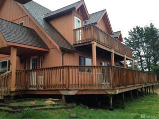 901 Jetty View Dr, Westport, WA 98595 (#1092022) :: Ben Kinney Real Estate Team