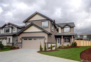 22343 SE 282nd Lane, Maple Valley, WA 98038 (#1092053) :: Ben Kinney Real Estate Team