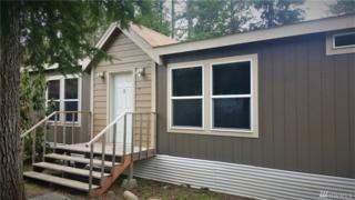 41401 Gold Bar Blvd, Gold Bar, WA 98251 (#1092070) :: Ben Kinney Real Estate Team