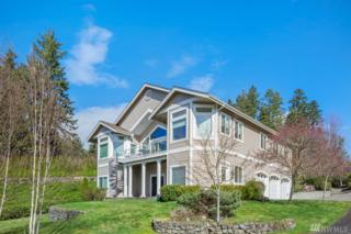2607 81st St Ct NW, Gig Harbor, WA 98332 (#1092076) :: Ben Kinney Real Estate Team