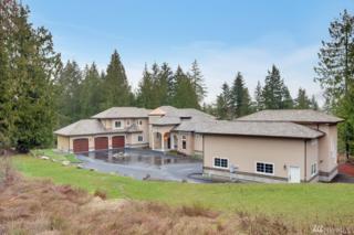 22509 162nd Ave E, Graham, WA 98338 (#1092120) :: Ben Kinney Real Estate Team