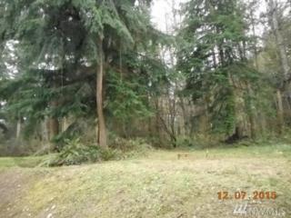 19-xxx-62 Forest Hill Rd, Camano Island, WA 98282 (#1092265) :: Ben Kinney Real Estate Team