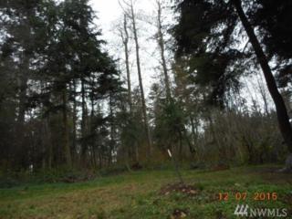 19-xxx-46 Forest Hill Rd, Camano Island, WA 98282 (#1092270) :: Ben Kinney Real Estate Team