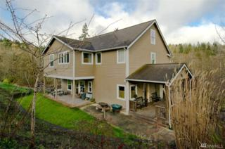 14029 S Keyport Rd, Poulsbo, WA 98370 (#1092364) :: Better Homes and Gardens Real Estate McKenzie Group