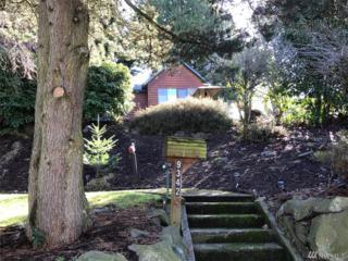 9342 57th Ave S, Seattle, WA 98118 (#1092377) :: Ben Kinney Real Estate Team