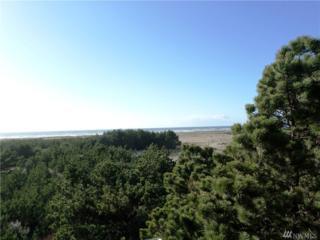 210-XX 210th Place, Ocean Park, WA 98640 (#1092644) :: Ben Kinney Real Estate Team