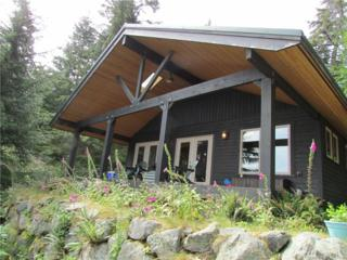 165 Raven Lane, Orcas Island, WA 98279 (#1092649) :: Ben Kinney Real Estate Team