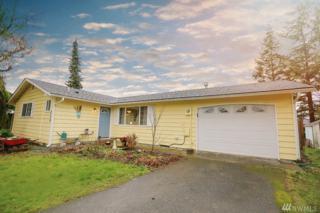 239 Pollman Circle, Lynden, WA 98264 (#1092652) :: Ben Kinney Real Estate Team