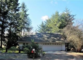 391 Dungeness Meadows, Sequim, WA 98382 (#1092667) :: Ben Kinney Real Estate Team