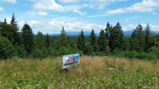 27311-(Lot 70) 173rd Place SE, Monroe, WA 98272 (#1092676) :: Ben Kinney Real Estate Team