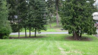 9999 Horizon View Dr, Sequim, WA 98382 (#1092691) :: Ben Kinney Real Estate Team