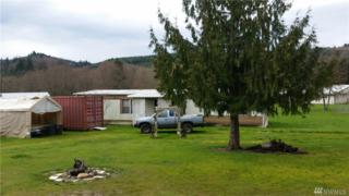 1003 D St, Vader, WA 98593 (#1092710) :: Ben Kinney Real Estate Team