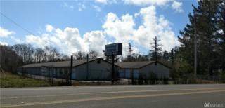 704 S Englewood Lane W, Westport, WA 98595 (#1092916) :: Ben Kinney Real Estate Team
