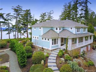 414 Eagle Crest Rd, Camano Island, WA 98282 (#1092924) :: Ben Kinney Real Estate Team
