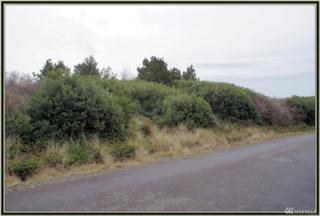 417 Ocean Spray, Ocean Shores, WA 98569 (#1092939) :: Ben Kinney Real Estate Team