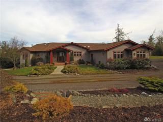 823 Sporseen Rd, Sequim, WA 98382 (#1092954) :: Ben Kinney Real Estate Team