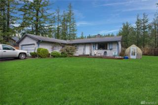13800 453 Place SE, North Bend, WA 98945 (#1092960) :: Ben Kinney Real Estate Team