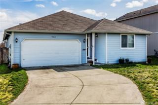 9962 Greenleaf Ct SE, Yelm, WA 98597 (#1093001) :: Ben Kinney Real Estate Team