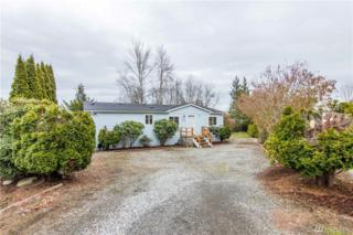 3691 Waldron Dr, Ferndale, WA 98248 (#1093163) :: Ben Kinney Real Estate Team