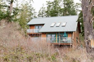 104 Milagra Lane, Lopez Island, WA 98261 (#1093225) :: Ben Kinney Real Estate Team