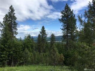 0-Lot 1B&2 Creekside Rd, Cle Elum, WA 98922 (#1093294) :: Ben Kinney Real Estate Team