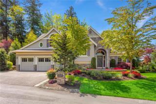 16609 SE Cougar Mountain Wy, Bellevue, WA 98006 (#1093329) :: Ben Kinney Real Estate Team