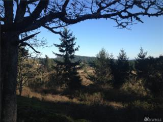 0-xxx Skottowe Lane, San Juan Island, WA 98250 (#1093461) :: Ben Kinney Real Estate Team