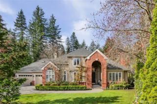 26123 SE 36th Ct, Sammamish, WA 98075 (#1093534) :: Real Estate Solutions Group