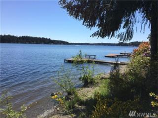 3740 E Mason Lake Dr W, Grapeview, WA 98546 (#1093748) :: Ben Kinney Real Estate Team