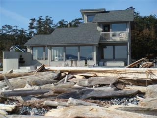 131 Driftwood Lane, San Juan Island, WA 98250 (#1093767) :: Ben Kinney Real Estate Team