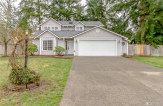 29203 80th Ave S, Roy, WA 98580 (#1093842) :: Ben Kinney Real Estate Team