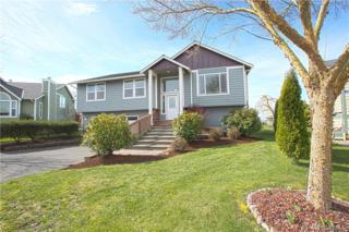 20312 Christie Place, Burlington, WA 98233 (#1093861) :: Ben Kinney Real Estate Team