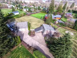 15625 Broadway Ave, Snohomish, WA 98296 (#1094007) :: Real Estate Solutions Group