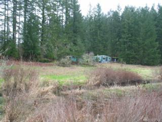 2116 Beaver Creek Dr SW, Olympia, WA 98512 (#1094029) :: Ben Kinney Real Estate Team