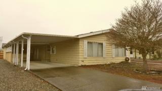 3 Donder Dr, Shelton, WA 98584 (#1094115) :: Ben Kinney Real Estate Team