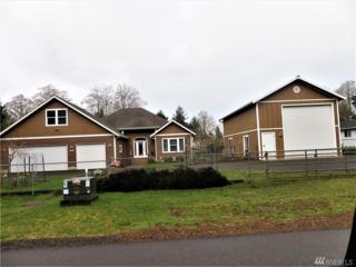 497 Quinault Ave SE, Ocean Shores, WA 98569 (#1094119) :: Ben Kinney Real Estate Team