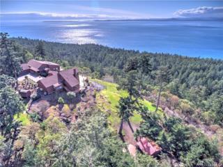 339 High Haro Rd, San Juan Island, WA 98250 (#1094224) :: Ben Kinney Real Estate Team