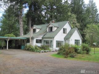 323 Gaydeski Rd, Forks, WA 98331 (#1094340) :: Ben Kinney Real Estate Team
