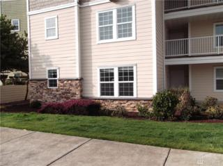 1600 W Ocean Ave #1011, Westport, WA 98595 (#1094380) :: Ben Kinney Real Estate Team