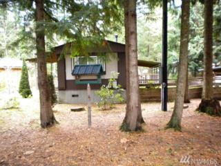 581 Flair Valley Dr, Maple Falls, WA 98266 (#1094382) :: Ben Kinney Real Estate Team