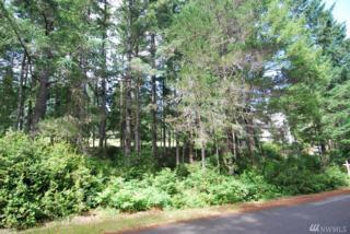 50 E Huckleberry Ct, Union, WA 98592 (#1094400) :: Ben Kinney Real Estate Team