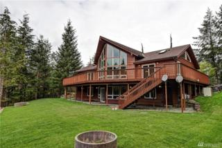 33404 SE Kent Kangley Rd, Ravensdale, WA 98051 (#1094408) :: Ben Kinney Real Estate Team