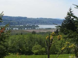 0 Pacific Hwy, Kelso, WA 98626 (#1094437) :: Ben Kinney Real Estate Team
