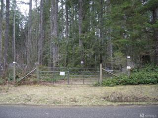 421 W Lost Lake Rd, Shelton, WA 98584 (#1094556) :: Ben Kinney Real Estate Team