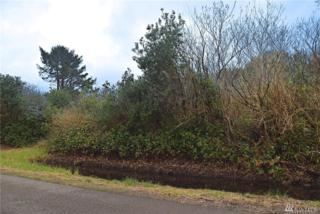 141 Frigate St, Ocean Shores, WA 98569 (#1094838) :: Ben Kinney Real Estate Team