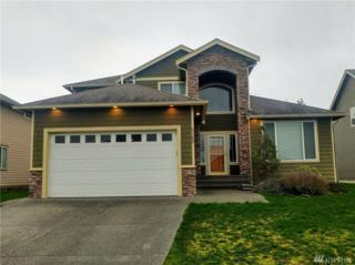 5168 Spoonbill Lane, Ferndale, WA 98248 (#1094879) :: Ben Kinney Real Estate Team