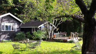 111 NE Lynnwood Dr, Belfair, WA 98528 (#1094885) :: Ben Kinney Real Estate Team