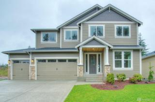17420 125th Av Ct E, Puyallup, WA 98374 (#1095012) :: Ben Kinney Real Estate Team