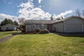 141 Williamson Rd, Sequim, WA 98382 (#1095014) :: Ben Kinney Real Estate Team