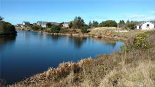 133 N Razor Clam Dr SW, Ocean Shores, WA 98569 (#1095171) :: Ben Kinney Real Estate Team